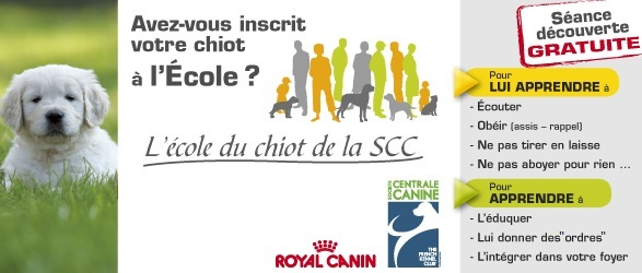 Ima ecole du chiot royal canin