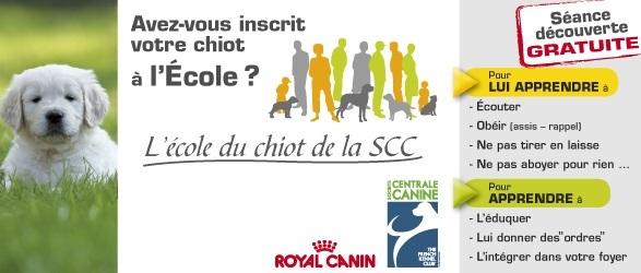 Ima ecole du chiot royal canin