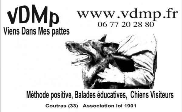 Recherche stage ou formation pour utiliser ma laisse Logo-vdmp-2
