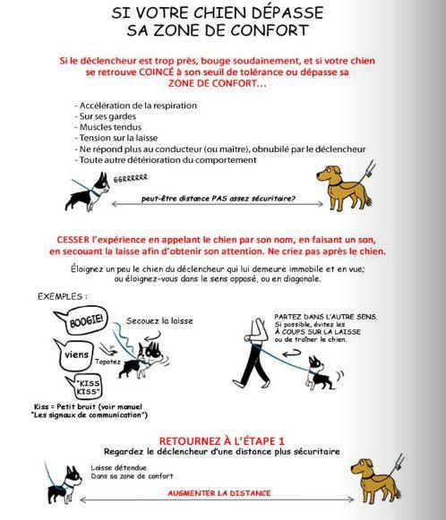 Post-it: le chien agressif / réactif Zone-de-confort-chien